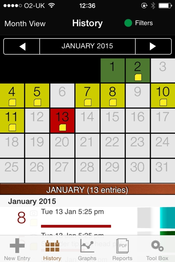 My Pain Diary tracks the symptoms of my endometriosis and their intensity.